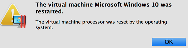 The virtual machine processor was reset by the operating